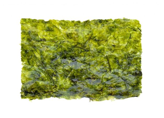 Foglio di alghe secche, alghe croccanti isolato su bianco.