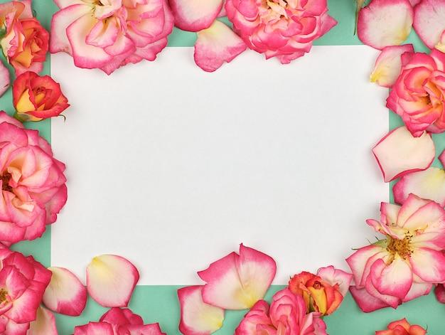 Foglio di carta bianca e boccioli di rose rosa