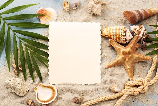 Foglio di carta bianco con conchiglie e stelle marine