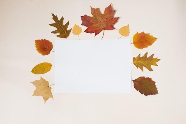 Foglio di carta bianco con foglie gialle e rosse autunnali
