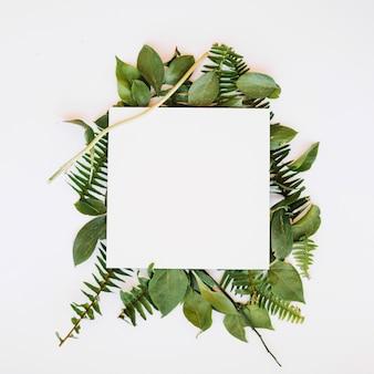 Foglio di carta in foglie