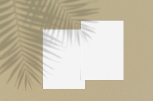 Foglio di carta verticale bianco bianco 5x7 pollici con sovrapposizione di ombra della palma.