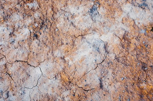 Fondo a terra secco e incrinato, superficie incrinata. marte