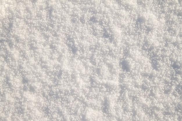 Fondo bianco di struttura del primo piano della neve