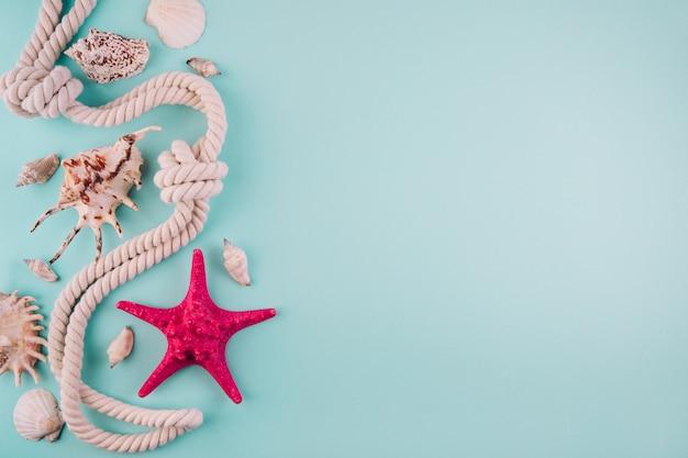 Fondo blu di vacanza del mare di ora legale con il pesce della stella, la corda marina e lo spazio della copia