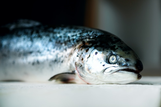 Fondo concreto nero scuro del pesce di color salmone fresco pronto per archiviare. copia spazio, vista dall'alto