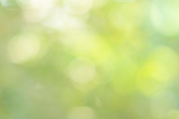 Fondo del cerchio di verde del bokeh della luce naturale