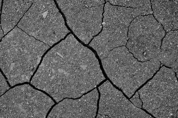 Fondo del suolo asciutto, struttura della crepa