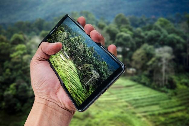 Fondo della natura del paesaggio dello smartphone della tenuta della mano