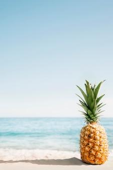 Fondo della spiaggia con ananas e copyspace