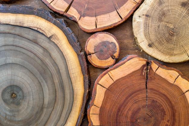 Fondo di ceppi incrinato marrone e giallo colorato ecologico solido naturale non dipinto rotondo di legno, sezioni del taglio dell'albero con le dimensioni e le forme differenti degli anelli annuali, struttura del fondo.