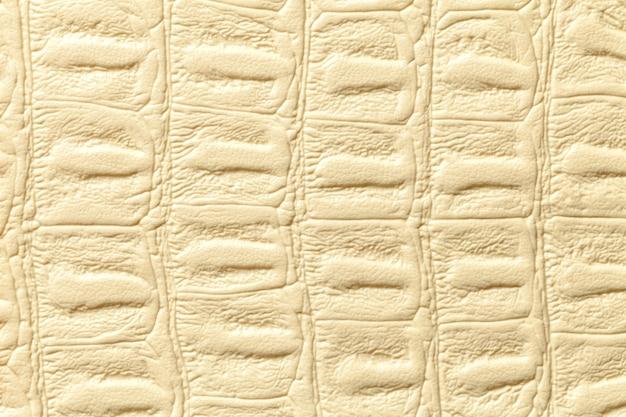 Fondo di cuoio giallo-chiaro di struttura, primo piano. pelle di rettile, macro.