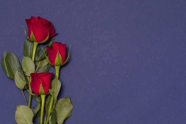 Fondo di giorno di biglietti di s. valentino, fondo blu navy senza cuciture con le rose rosse