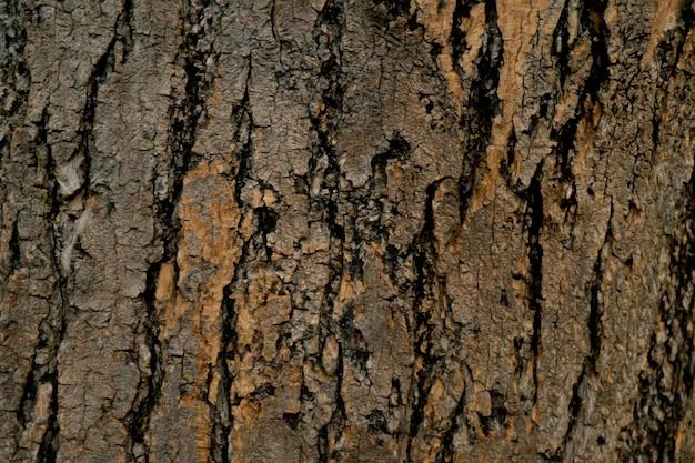 Fondo di legno astratto