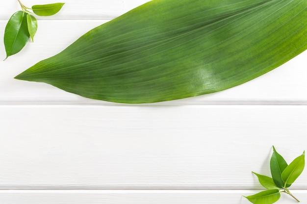Fondo di legno bianco con le foglie verdi, vista superiore.