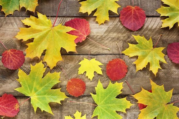 Fondo di legno e foglie di acero e tremule di autunno, rosso e giallo, vista superiore.