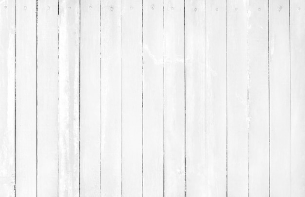 Fondo di legno grigio bianco della parete, struttura del legno della corteccia con il vecchio modello naturale