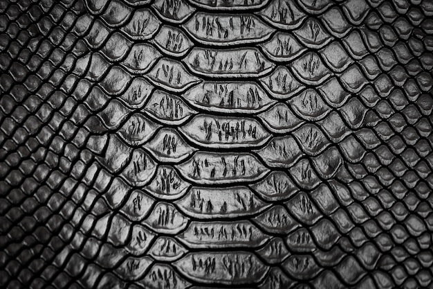 Fondo di struttura del modello della pelle di serpente nero