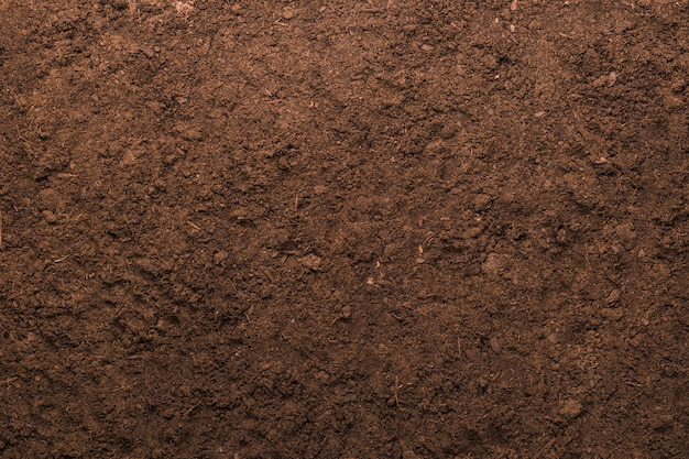 Fondo di struttura del suolo per il concetto di giardinaggio