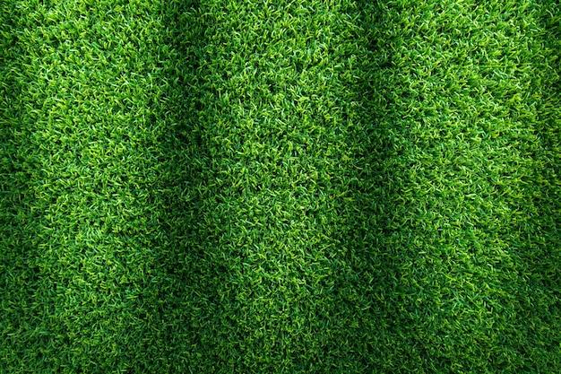 Fondo di struttura dell'erba per progettazione di sport