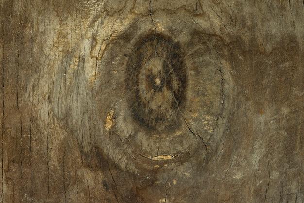 Fondo di struttura di legno rustico