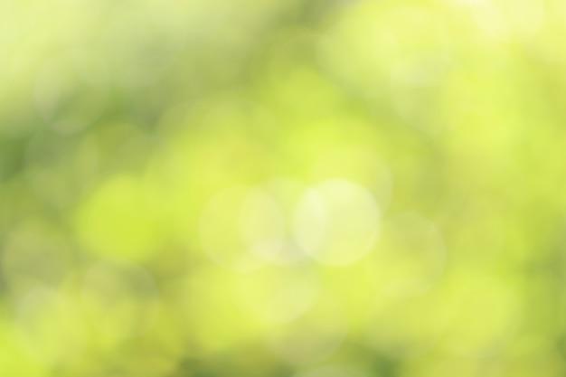 Fondo giallo di struttura del bokeh, sfuocatura morbida