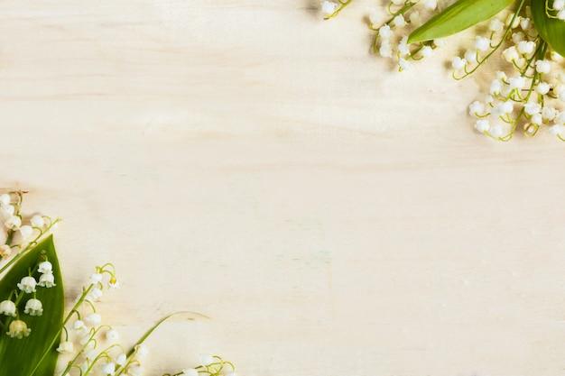 Fondo in legno chiaro fiori mughetti