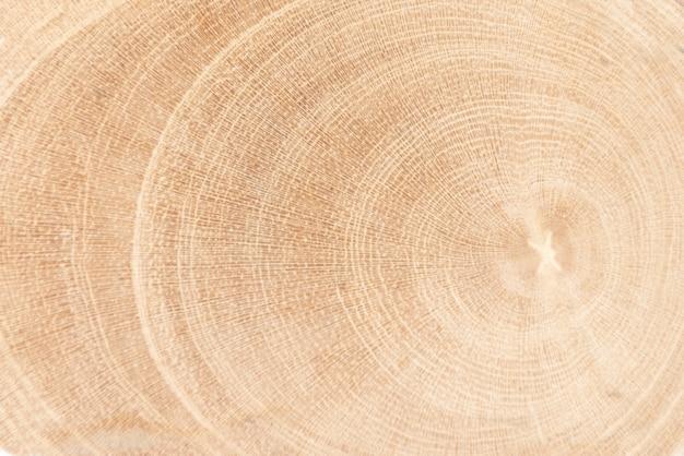 Fondo in legno naturale. struttura di legno. struttura di legno per design e decorazione.