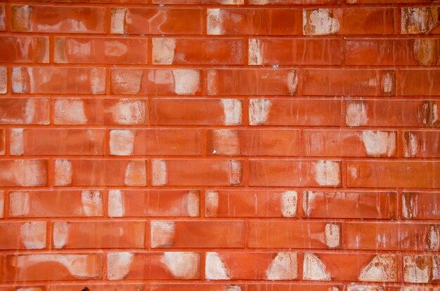 Fondo modellato della parete vago