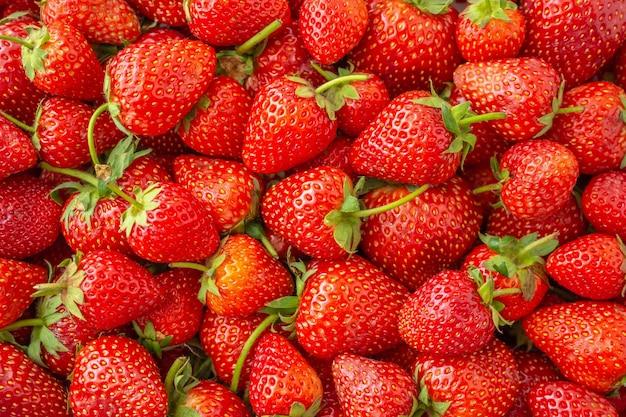 Fondo organico fresco della frutta della fragola primo piano di vista superiore