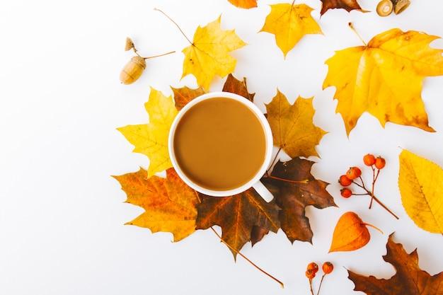 Fondo piano di disposizione di autunno su bianco
