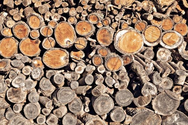 Fondo rotondo del ceppo di legno del tek. pila di legna da ardere naturale