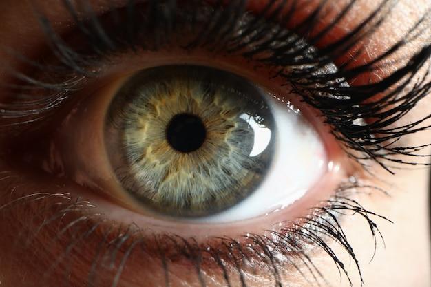 Fondo umano del primo piano del supermacro dell'occhio verde
