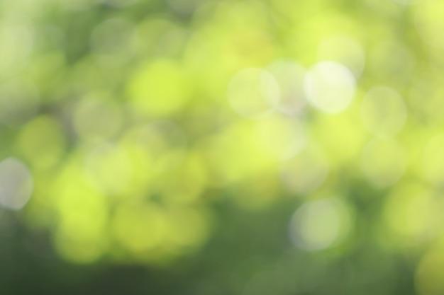 Fondo verde di struttura del bokeh, sfuocatura morbida