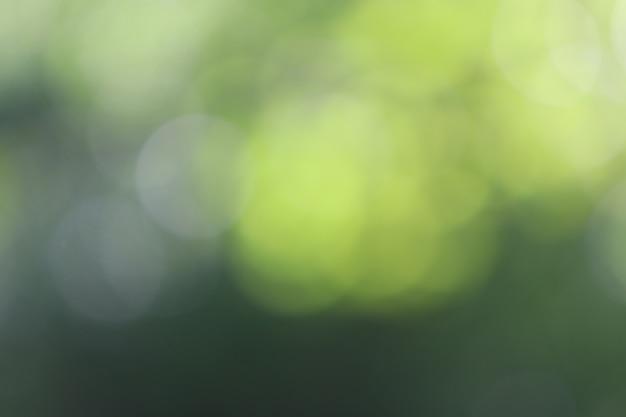Fondo verde di struttura della luce di bokeh, sfuocatura morbida