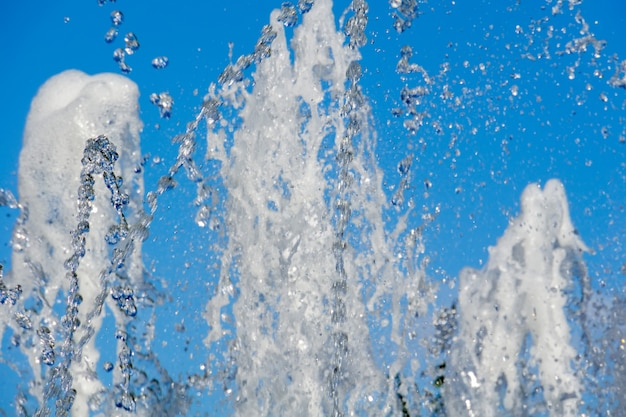 Fontana nella macro del parco