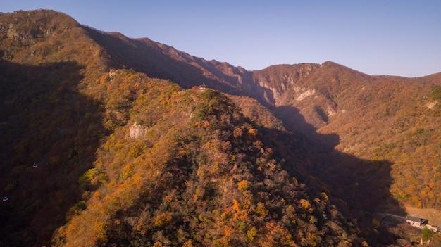 Foresta d'autunno in corea
