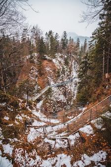 Foresta di mittenwald in inverno in germania