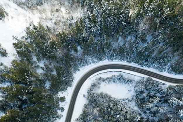 Foresta invernale e la strada
