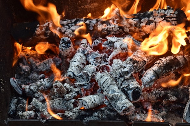 Foresta selvaggia della natura delle schede del fuoco caldo della legna da ardere