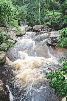 Foresta verde della cascata della corrente del fiume della montagna - abbellisca la giungla della foresta pluviale dell'albero della pianta della natura con roccia e la foresta tropicale verde