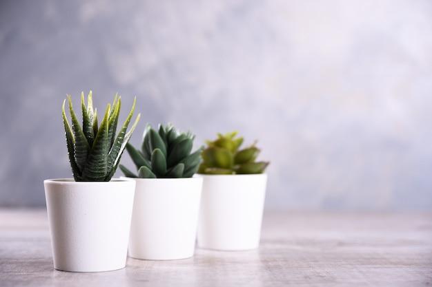 Forma differente dell'erba di fiori artificiali in un vaso sulla fine di legno del fondo su con lo spazio e il testo della copia
