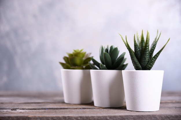 Forma differente dell'erba di fiori artificiali in un vaso sulla fine di legno della tavola su