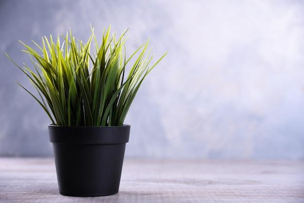 Forma differente dell'erba di fiori artificiali in una fine del vaso su con lo spazio e il testo della copia