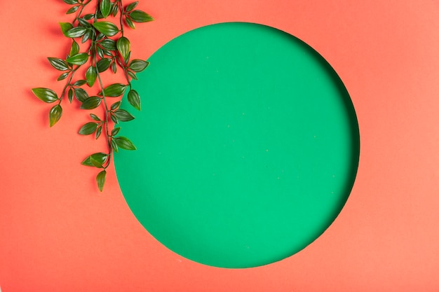 Forma geometrica fatta a mano con foglie accanto