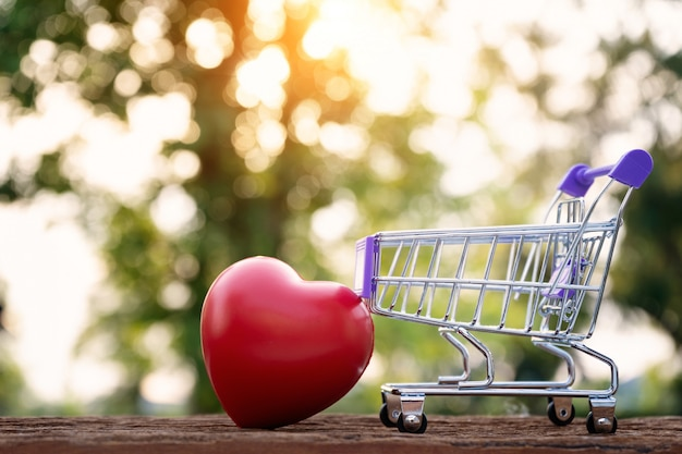 Forma rossa del cuore sul mini carrello di acquisto sopra il fondo della natura