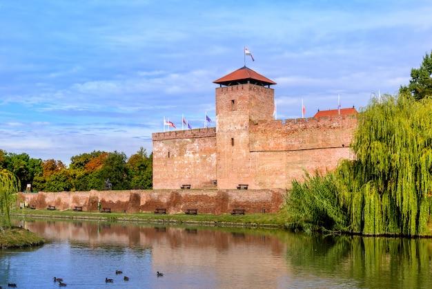 Fortezza medievale di fronte a un lago nautico e un enorme salice