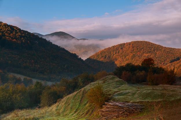 Foschia di mattina della foschia della montagna sopra la foresta del terreno boscoso