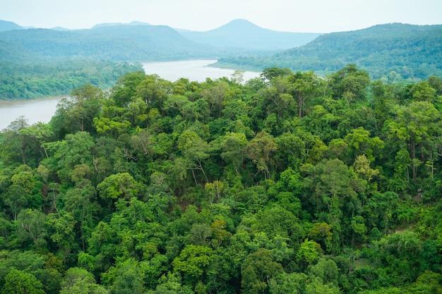 Foto dall'alto di alberi, foreste, montagne, fiume. vista dall'alto.