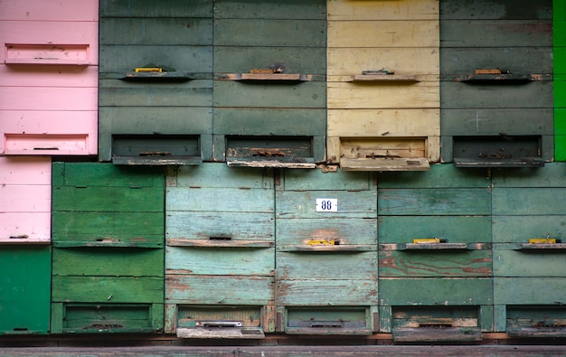 Foto di cassette postali d'epoca in legno